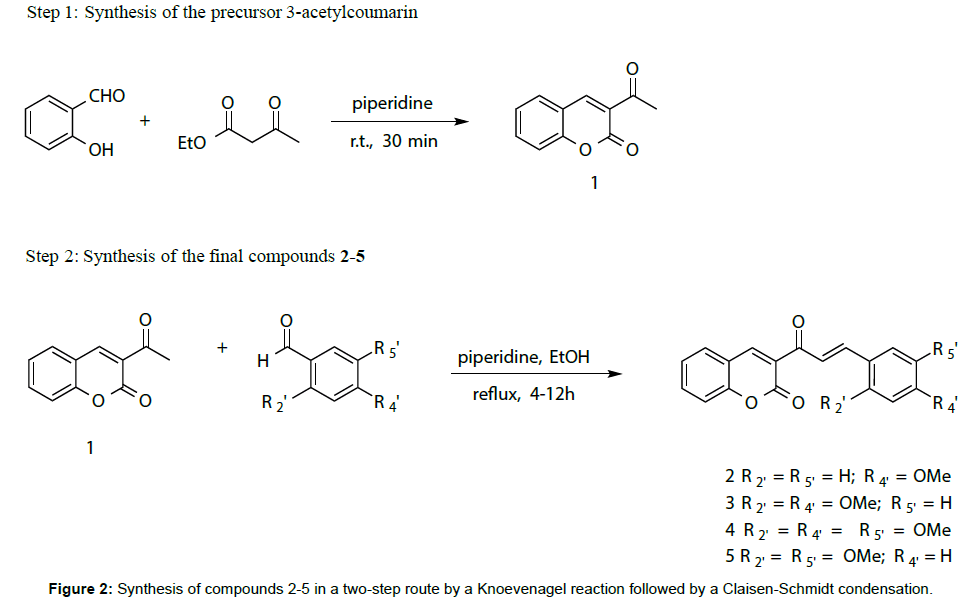 medicinal-chemistry-Synthesis-compounds-Knoevenagel