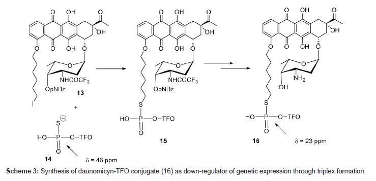 medicinal-chemistry-Synthesis-daunomicyn