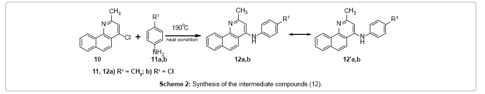 medicinal-chemistry-Synthesis-intermediate-compounds