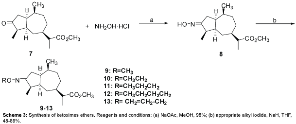 medicinal-chemistry-Synthesis-ketoximes-appropriate