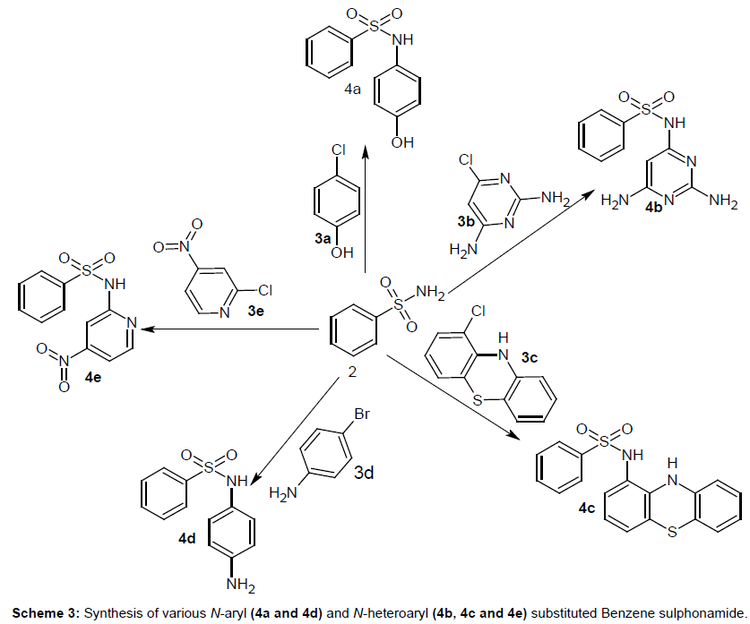medicinal-chemistry-Synthesis-various-Benzene