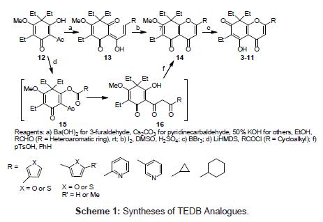 medicinal-chemistry-TEDB-Analogues