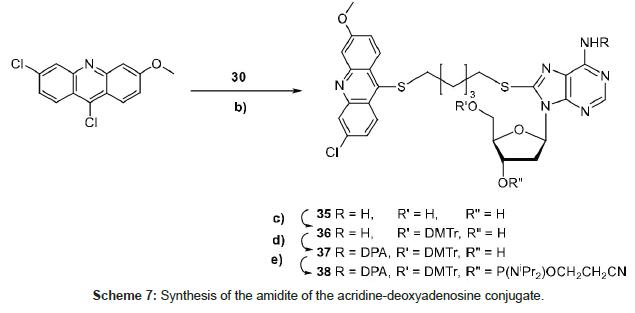 medicinal-chemistry-acridine-deoxyadenosine