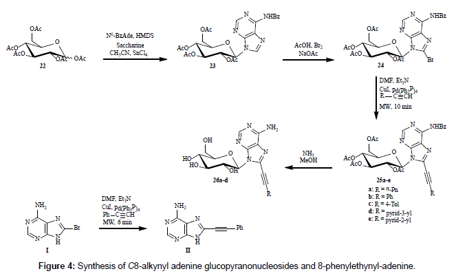 medicinal-chemistry-alkynyl-adenine
