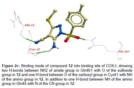 medicinal-chemistry-amino-group