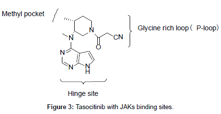 medicinal-chemistry-binding-sites