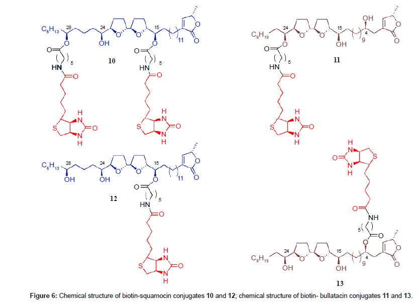 medicinal-chemistry-biotin-squamocin