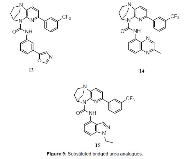 medicinal-chemistry-bridged-urea-analogues