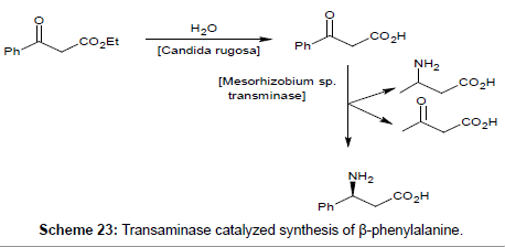 medicinal-chemistry-catalyzed-synthesis