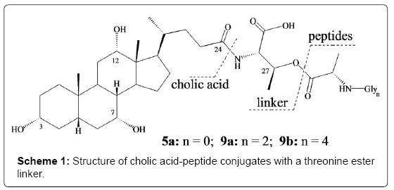 medicinal-chemistry-cholic-acid-peptide