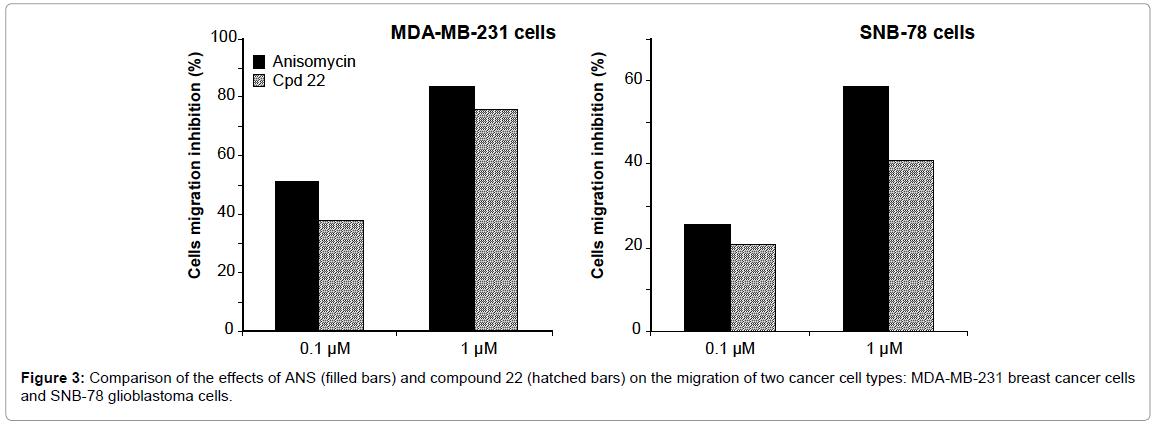 medicinal-chemistry-compound-migration-cancer