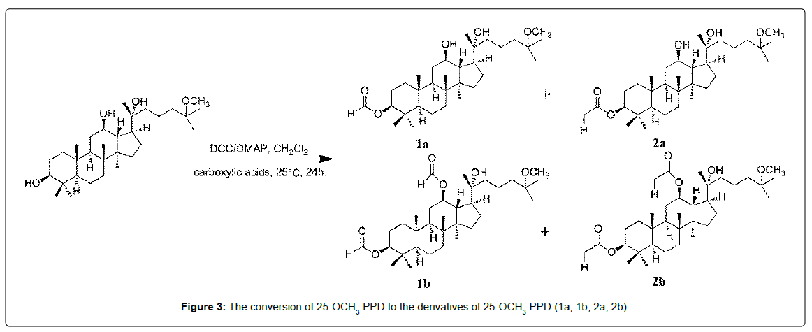 medicinal-chemistry-derivatives