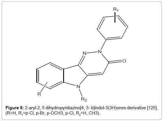 medicinal-chemistry-dihydropyridazino-indol-ones