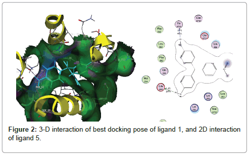 medicinal-chemistry-docking-pose