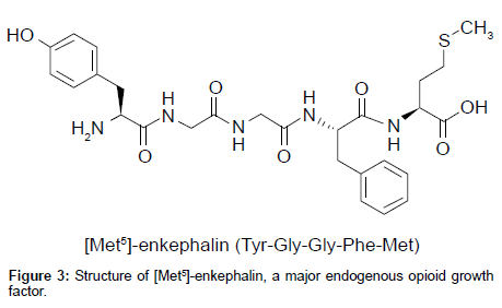 medicinal-chemistry-endogenous-opioid