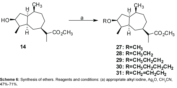 medicinal-chemistry-ethers-appropriate-iodine
