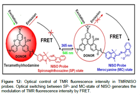 medicinal-chemistry-fluorescence-intensity