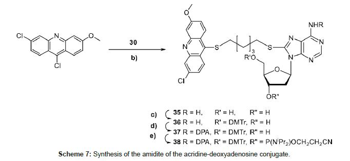medicinal-chemistry-fluorescent-oligonucleotide
