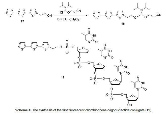 medicinal-chemistry-fluorescent-oligothiophene