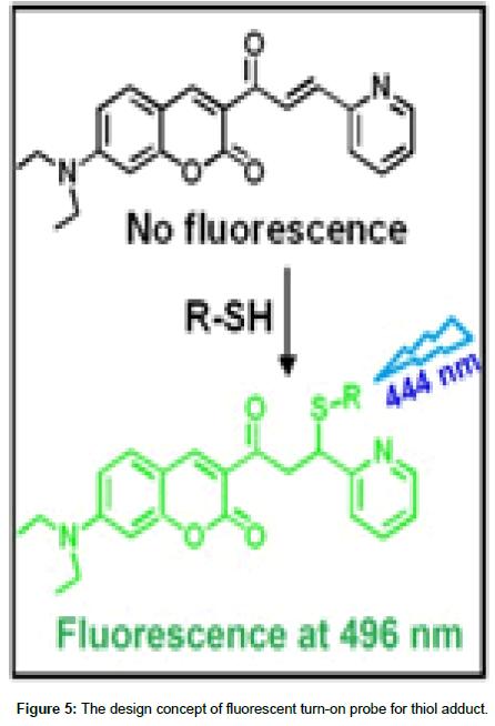 medicinal-chemistry-fluorescent-turn