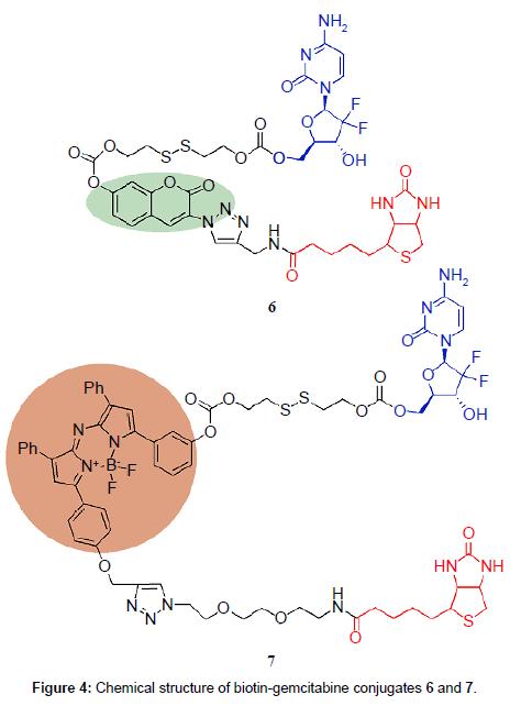 medicinal-chemistry-gemcitabine-conjugates