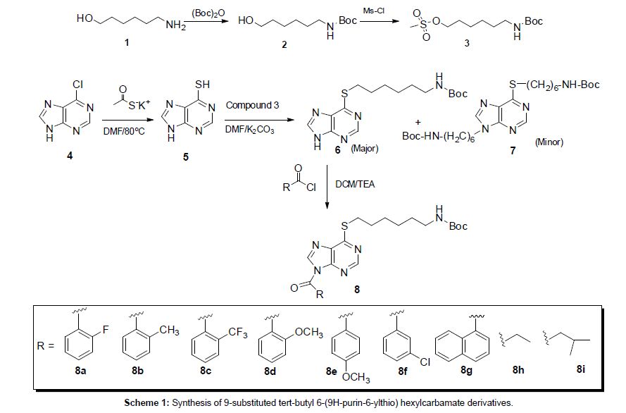 medicinal-chemistry-hexylcarbamate-derivatives