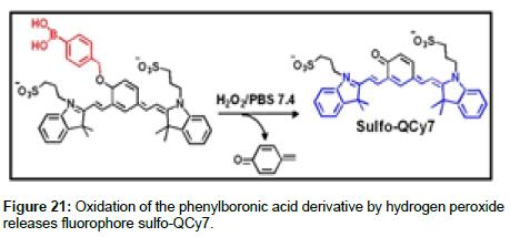 medicinal-chemistry-hydrogen-peroxide