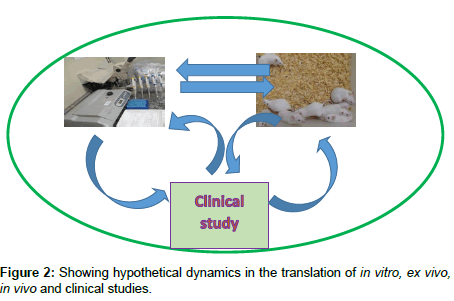 medicinal-chemistry-hypothetical-dynamics