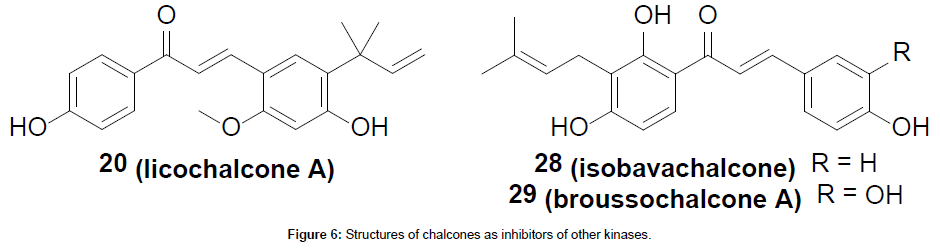 medicinal-chemistry-inhibitors-other-kinases
