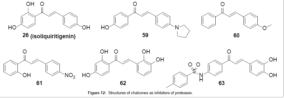 medicinal-chemistry-inhibitors-proteases