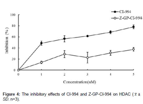 medicinal-chemistry-inhibitory-effects