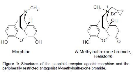 medicinal-chemistry-opioid-receptor-agonist