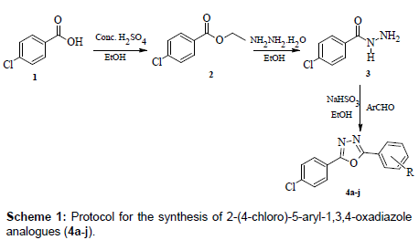 medicinal-chemistry-oxadiazole-analogues
