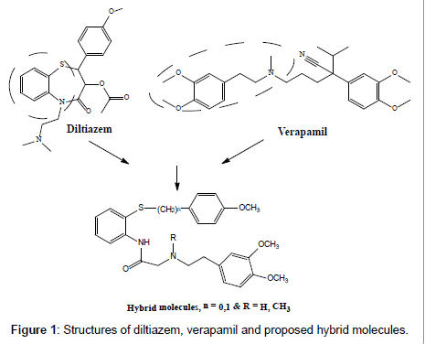 medicinal-chemistry-proposed-hybrid-molecules