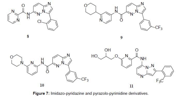 medicinal-chemistry-pyrazolo-pyrimidine-derivatives