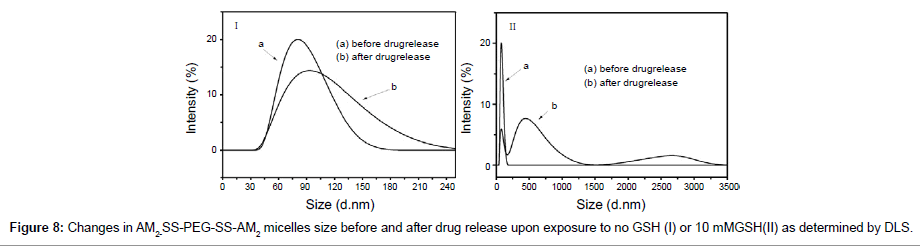 Single Polymer-drug Conjugate Carrying Two Drugs for Fixed-dose