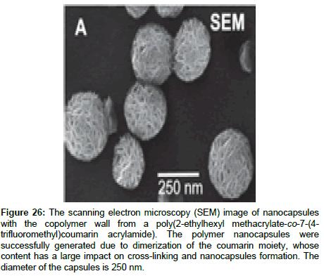 medicinal-chemistry-scanning-electron-microscopy