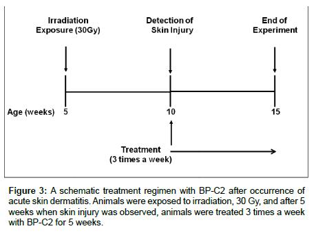 medicinal-chemistry-schematic-treatment-regimen