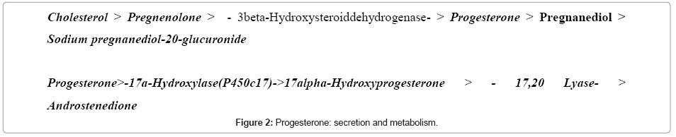 medicinal-chemistry-secretion-metabolism