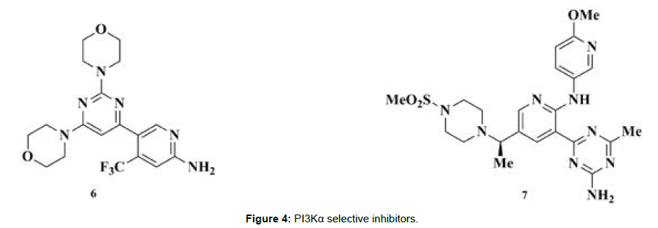 medicinal-chemistry-selective-inhibitors