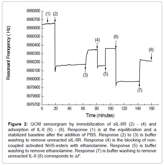 medicinal-chemistry-sensorgram-immobilization-adsorption
