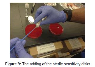 medicinal-chemistry-sterile-sensitivity