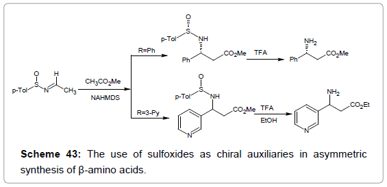 medicinal-chemistry-sulfoxides-chiral-auxiliaries