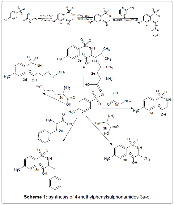 medicinal-chemistry-synthesis-methylphenylsulphonamides