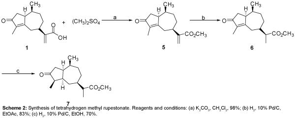 medicinal-chemistry-tetrahydrogen-methyl-rupestonate