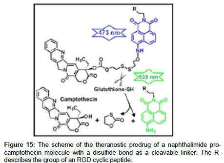 medicinal-chemistry-theranostic-prodrug