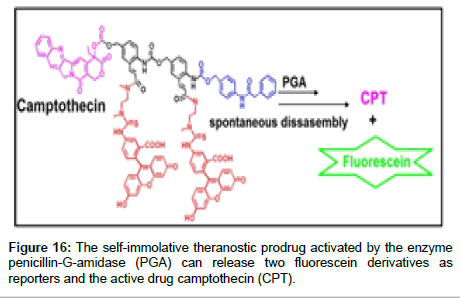 medicinal-chemistry-theranostic-prodrug-activated