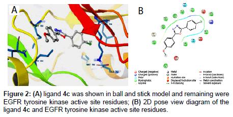 medicinal-chemistry-tyrosine-kinase-active