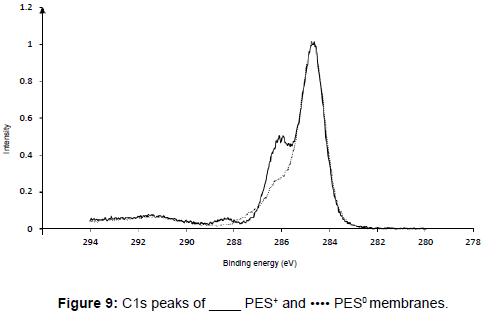 membrane-science-technology-C1-peaks-PES