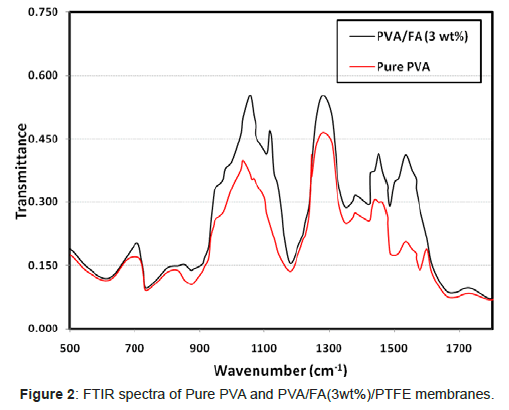membrane-science-technology-FTIR-spectra-Pure-PVA